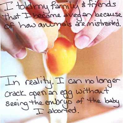 takeshi s challenge cracked egg